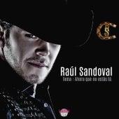 Ahora Que No Estas Tu by Raul Sandoval