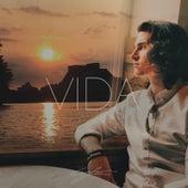 Vida by Chris Lee