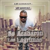 Se Acabaron las Lagrimas by Mr Manyao