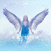 Freedom by Erik Ekholm
