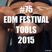 #75 EDM Festival Tools 2015 by Various Artists
