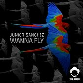 Wanna Fly by Junior Sanchez