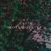 Kitsune: Botanique by Hasta