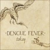 Tokay von Dengue Fever