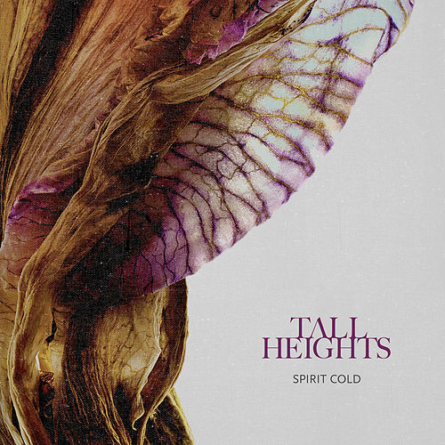 Spirit Cold by Tall Heights