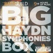 Big Haydn Symphonies Box by Various Artists