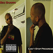 Can't Stop Progress by Various Artists