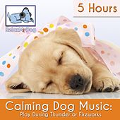 Calming Dog Music: Play During Thunder or Fireworks - 5 Hours by Relaxmydog