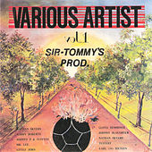 Sir Tommy's Production - Various Artists, Vol. 1 by Various Artists