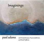 Imaginings by Various Artists
