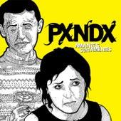 Amantes Sunt Amentes by Panda