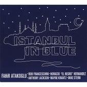 Istanbul in Blue by Fahir Atakoglu