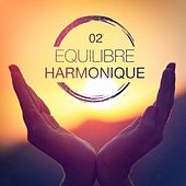 Equilibre harmonique, Vol. 2 by Various Artists