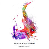 In the Process of Eight (Mixed by Carl Cox) by Various Artists