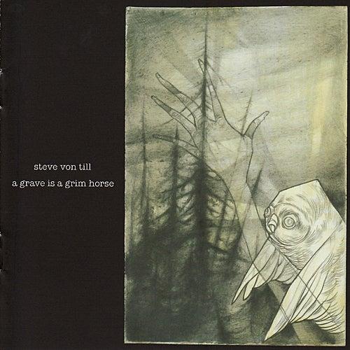 A Grave Is A Grim Horse by Steve Von Till