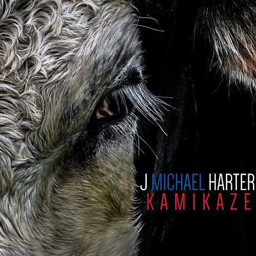 Kamikaze by J. Michael Harter