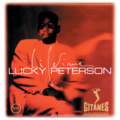 Lifetime (with Bootsy Collins) by Lucky Peterson
