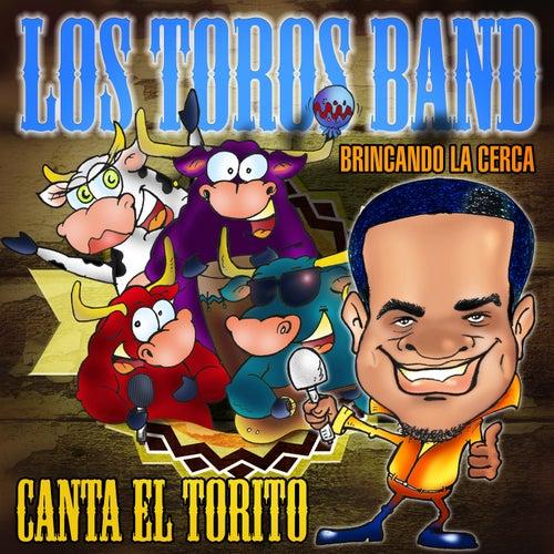 Brincando la Cerca by Los Toros Band