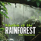 Rhythm of the Rainforest by Phil Thornton