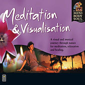 Meditation & Visualisation by Medwyn Goodall