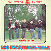 17 Exitos by Los Rayantes del Valle