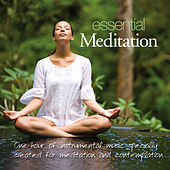 Essential Meditation by Patrick Kelly