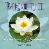 Tranquility II by David Sun