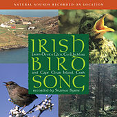 Irish Birdsong by Natural Sounds