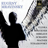 Mravinskij Conducts Tchaikovsky, Bruckner, Wagner and Others by Evgenij Aleksandrovič Mravinskij