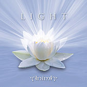 Light by Anima