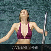 Ambient Spirit by Various Artists