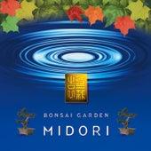 Bonsai Garden by Midori