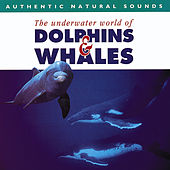 Authentic Natural Sounds: The Underwater World of Dolphins & Whales by Natural Sounds
