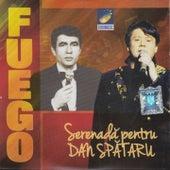 Serenadă Pentru Dan Spătaru by Fuego