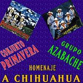 Homenaje a Chihuahua by Various Artists