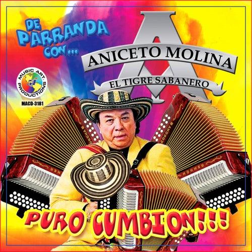 Puro Cumbion by Aniceto Molina
