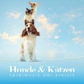 Hunde & Katzen Spielmusik der Klassik by Various Artists