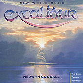Excalibur by Medwyn Goodall