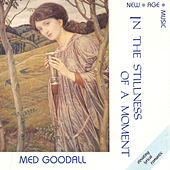 In the Stillness of a Moment by Medwyn Goodall