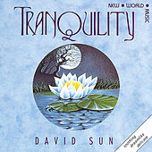 Tranquility by David Sun