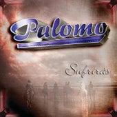 Sufrirás by Palomo