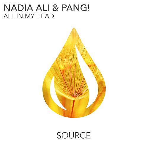 All In My Head by Nadia Ali
