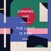 Dimming Awe, The Light Is Raw by Botany
