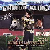 Duro en la Pintura - Hard in the Paint by Chingo Bling