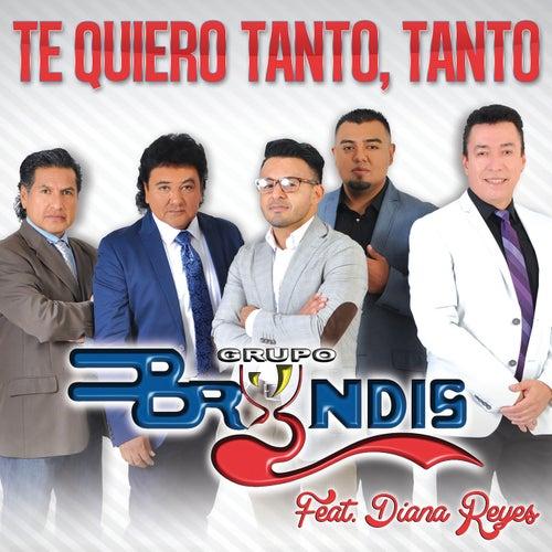 Te Quiero Tanto, Tanto by Grupo Bryndis