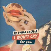 I Won't Cry For You by La Santa Cecilia