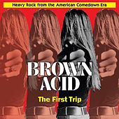 Brown Acid - The First Trip by Various Artists