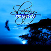 Sleepy Sounds – Relaxing Music for Deep Sleep, Soothing Nature Sounds, Baby Lullaby, Music for Toddlers to Calm Down, Massage Relaxation by Various Artists