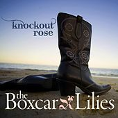 Knockout Rose by The Boxcar Lilies