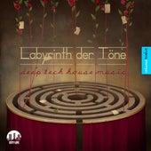 Labyrinth der Töne, Vol. 12 - Deep & Tech-House Music by Various Artists